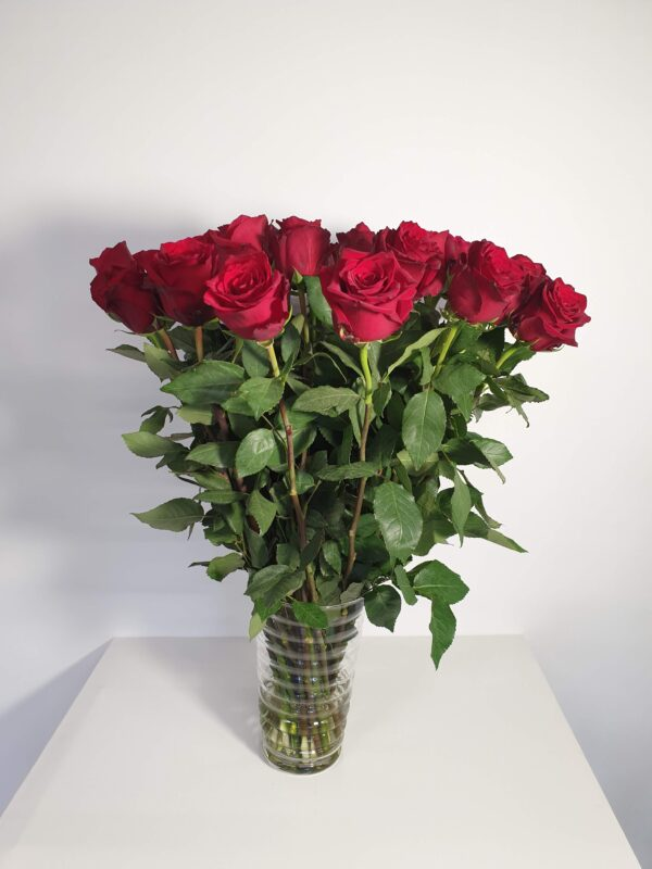 Punane roos 60-80cm